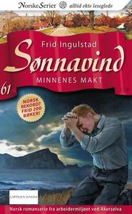 Minnenes makt (ebok) av Frid Ingulstad