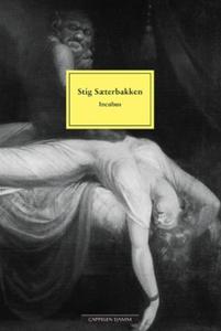 Incubus (ebok) av Stig Sæterbakken