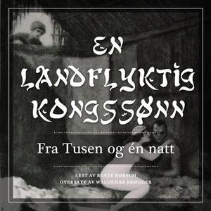 En landflyktig kongssønn (lydbok) av