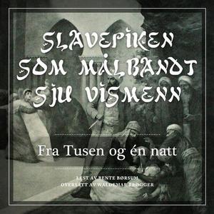 Slavepiken som målbandt sju vismenn (lydbok)