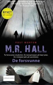 De forsvunne (ebok) av M.R. Hall