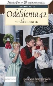 Knuste hjerter (ebok) av Anne Marie Meyer