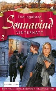 Vinternatt (ebok) av Frid Ingulstad