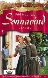 Sjalusi (ebok) av Frid Ingulstad