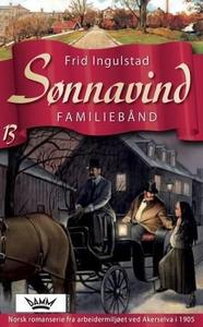 Familiebånd (ebok) av Frid Ingulstad