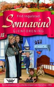 Gjenforening (ebok) av Frid Ingulstad