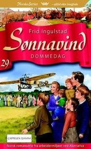 Dommedag (ebok) av Frid Ingulstad