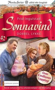 Dobbel lykke (ebok) av Frid Ingulstad
