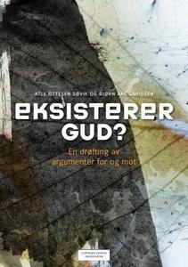 Eksisterer Gud? (ebok) av Bjørn Are Davidsen,