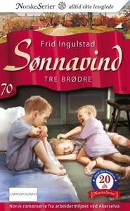 Tre brødre (ebok) av Frid Ingulstad