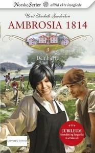 Delt hjerte (ebok) av Berit Elisabeth Sandvik