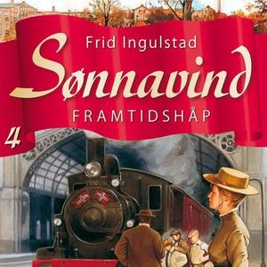 Framtidshåp (lydbok) av Frid Ingulstad