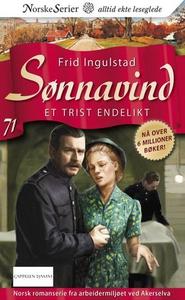 Et trist endelikt (ebok) av Frid Ingulstad