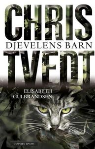 Djevelens barn (ebok) av Elisabeth Gulbrandse