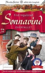 Overfallet (ebok) av Frid Ingulstad