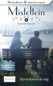 Hjerteskjærende valg (ebok) av Elisabeth Hamm