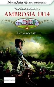 Der kampen sto (ebok) av Berit Elisabeth Sand