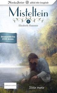 Siste møte (ebok) av Elisabeth Hammer