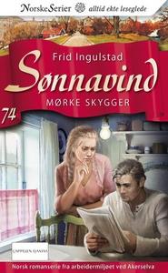 Mørke skygger (ebok) av Frid Ingulstad
