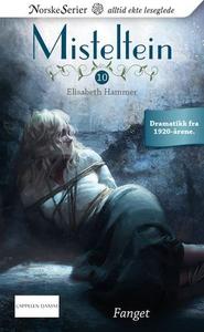 Fanget (ebok) av Elisabeth Hammer