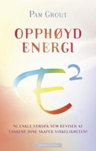 Opphøyd energi (ebok) av Pam Grout