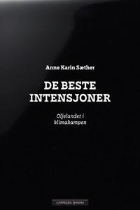 De beste intensjoner (ebok) av Anne Karin Sæt