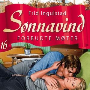 Forbudte møter (lydbok) av Frid Ingulstad