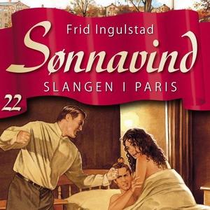 Slangen i Paris (lydbok) av Frid Ingulstad