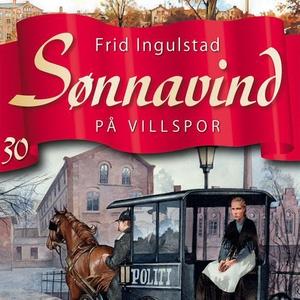 På villspor (lydbok) av Frid Ingulstad