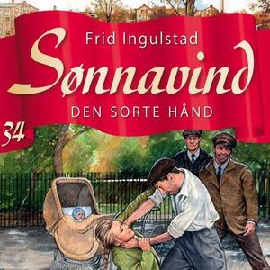 Den sorte hånd (lydbok) av Frid Ingulstad