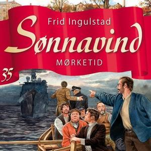 Mørketid (lydbok) av Frid Ingulstad