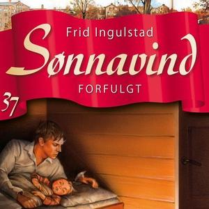 Forfulgt (lydbok) av Frid Ingulstad