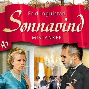 Mistanker (lydbok) av Frid Ingulstad