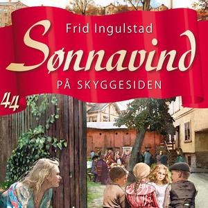 På skyggesiden (lydbok) av Frid Ingulstad