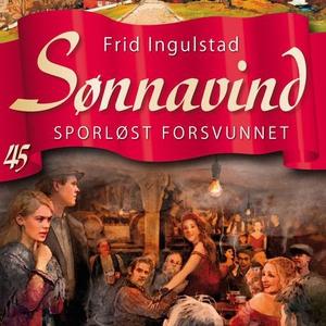 Sporløst forsvunnet (lydbok) av Frid Ingulsta