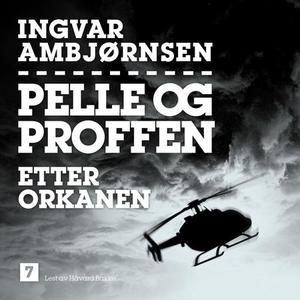 Etter orkanen (lydbok) av Ingvar Ambjørnsen