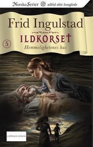 Hemmelighetenes hus (ebok) av Frid Ingulstad