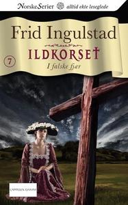 I falske fjær (ebok) av Frid Ingulstad