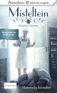 Hemmelig beundrer (ebok) av Elisabeth Hammer