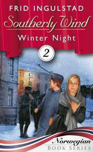 Winter night (ebok) av Frid Ingulstad