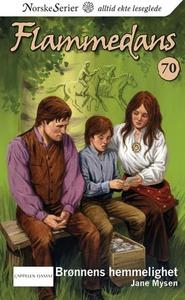 Brønnens hemmelighet (ebok) av Jane Mysen
