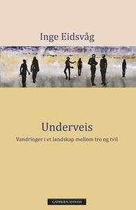 Underveis (ebok) av Inge Eidsvåg