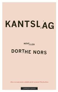 Kantslag (ebok) av Dorthe Nors