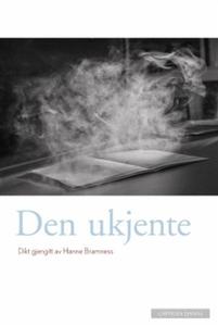 Den ukjente (ebok) av Hanne Bramness