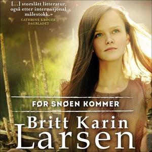 Før snøen kommer (lydbok) av Britt Karin Lars