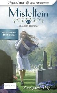 Kjærlighetens håp (ebok) av Elisabeth Hammer