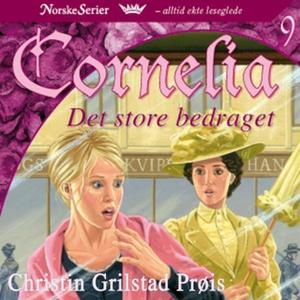 Det store bedraget (lydbok) av Christin Grils