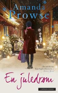 En juledrøm (ebok) av Amanda Prowse