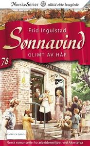 Glimt av håp (ebok) av Frid Ingulstad