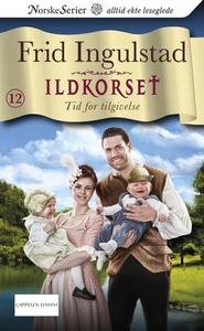 Tid for tilgivelse (ebok) av Frid Ingulstad